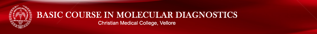 Contact Us - Molecular Haemato-oncology Group